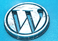 WordPress Websites II, Creating