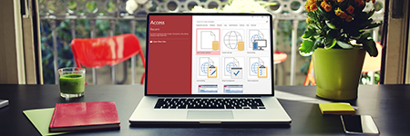 Introduction to Microsoft Access 2016 Deal