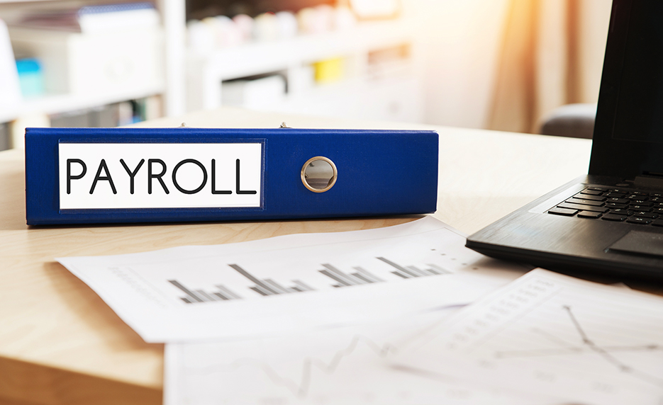 Payroll Practice Management Excel 2019